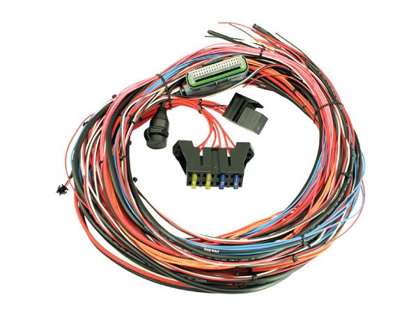 สายไฟชุดใหญ่กล่อง EMS-4 : Universal wiring harness (30-2905-96)